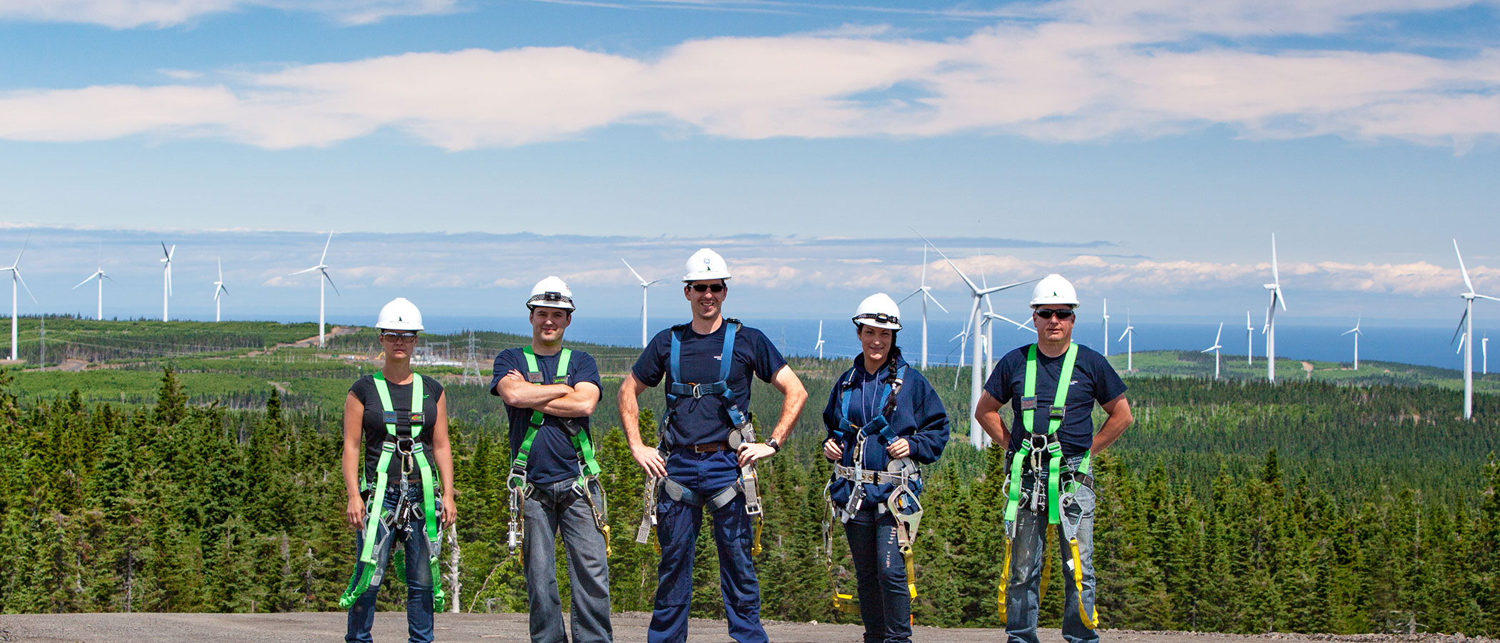 Five female and male utility engineers in climbing harnesses stand on a clearing above a forest sprinkled with dozens of wind turbines.