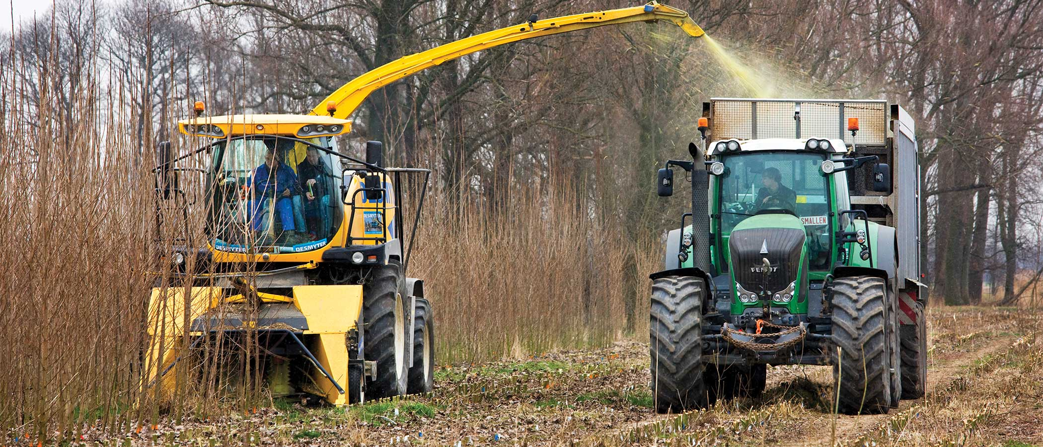 Tractpr harvesting biomass in Germany.