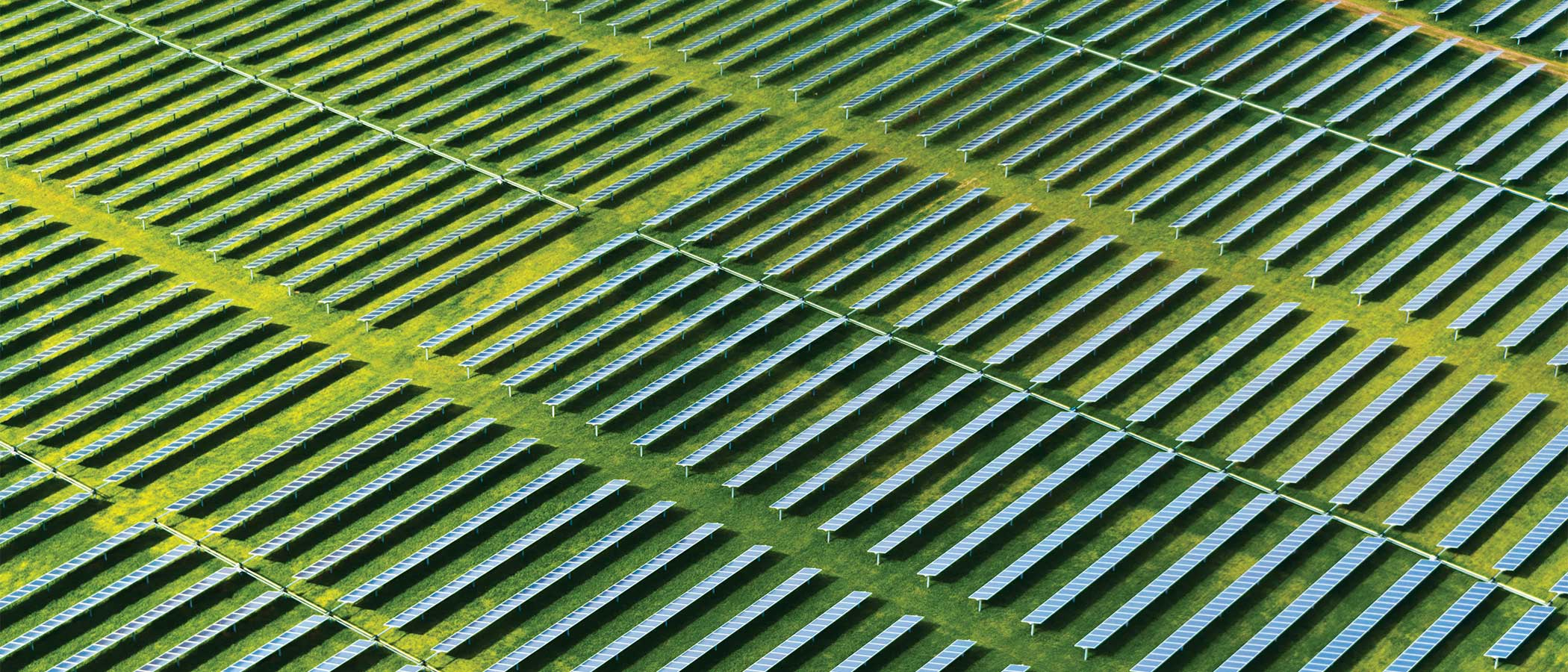 Aerial view of a solar farm with many rows of solar panels in a field.