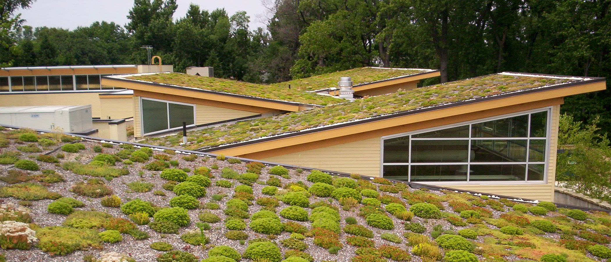 Green roof at Arlington's Walter Reed Community Center.